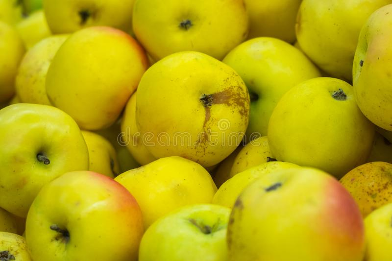 Verious apples in Market stall. healthy food.  royalty free stock images