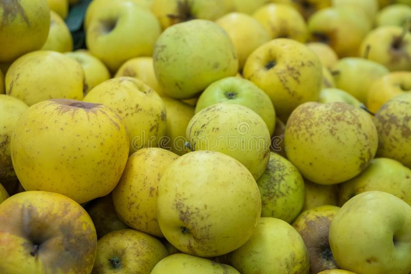 Verious apples in Market stall. healthy food.  royalty free stock image
