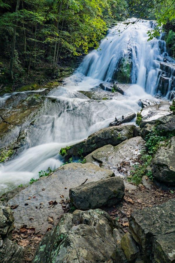 Veritcal sikt av att vråla körda vattenfall, Jefferson Nation Forest, Virginia, USA royaltyfri bild