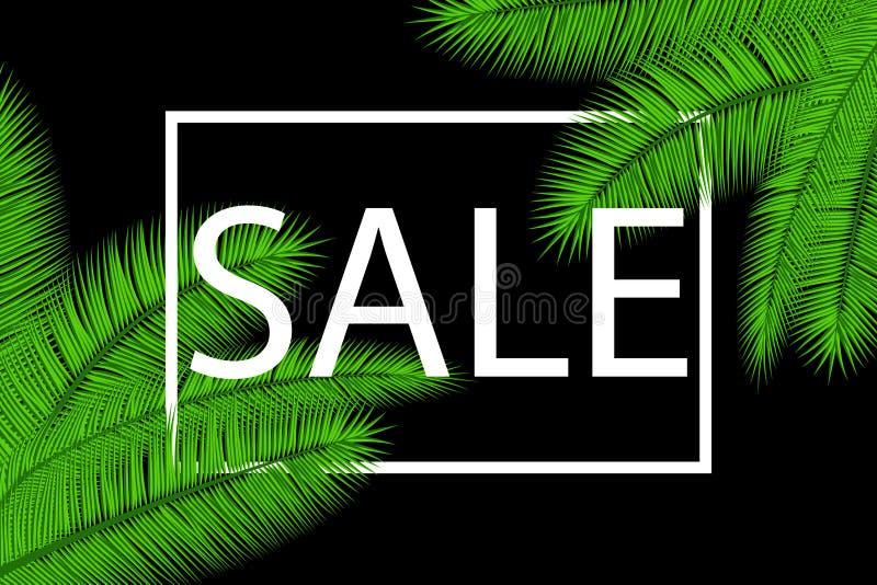 Verkaufs-Fahne mit Palmblättern Tropischer Feiertagsmit blumenhintergrund Auch im corel abgehobenen Betrag Heiße Sommerschlussver vektor abbildung