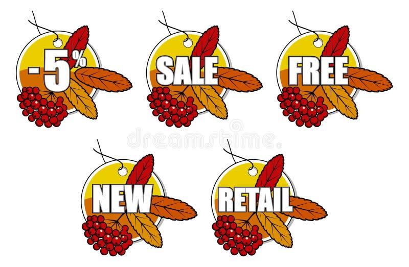 Verkaufs-Herbst rotes ashberry lizenzfreie abbildung