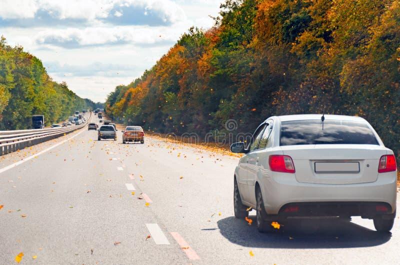 Verkeer van auto's tegen dag langs een bezige weg onder de herfstbomen en vliegende gele bladeren stock fotografie
