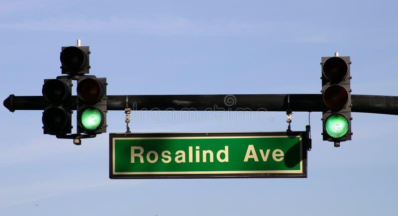 Verkeerslicht op Ave Rosalind - FLBusiness00040a royalty-vrije stock foto's