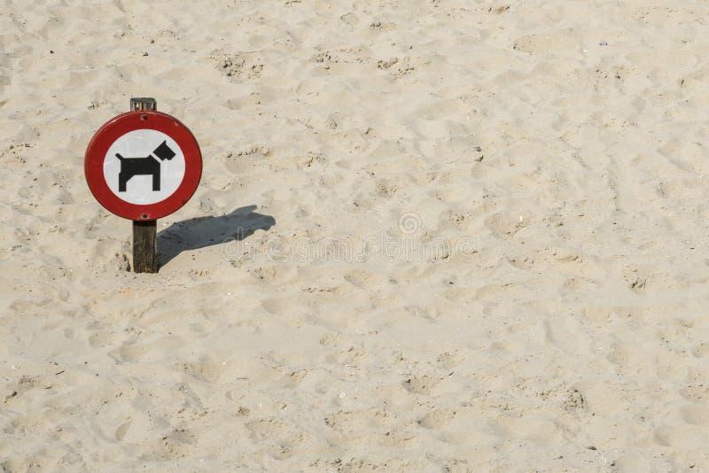 Verkeersteken 'die voor honden in zand worden verboden stock afbeeldingen