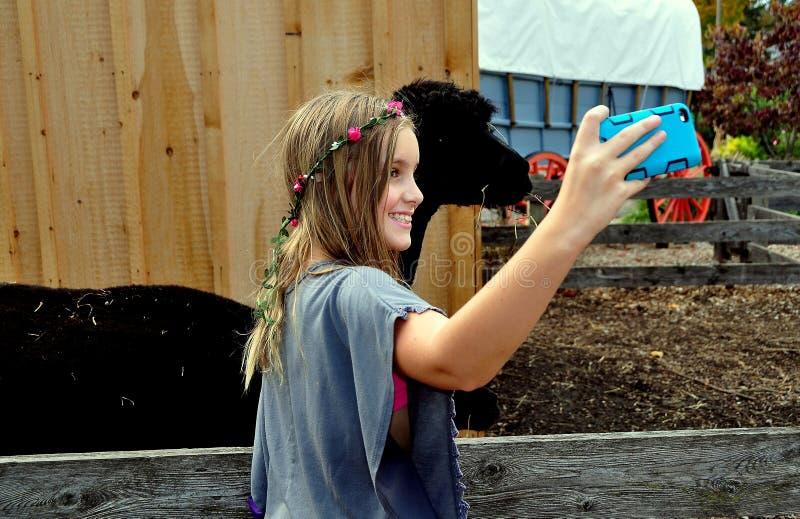 Verkehr, PA: Mädchen, das Selfie mit Lama nimmt stockfotos