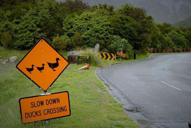 Verkehrszeichen für Verlangsamungsentenüberfahrt stockbilder