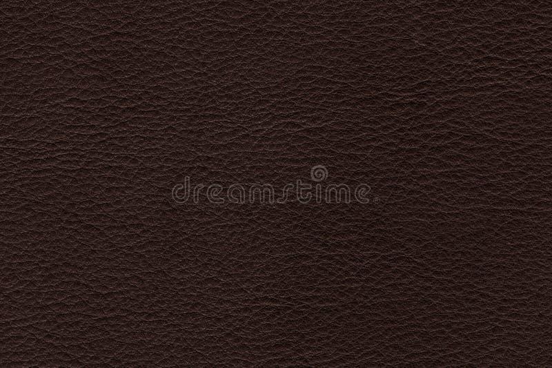 Verklig brun f?rg piskar bakgrund, closeup av ?ktt l?der arkivbild