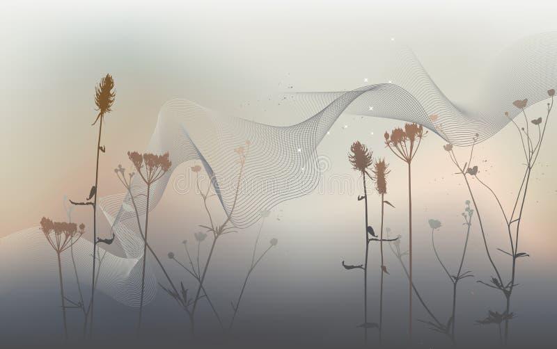 Verklig gräskontur, äng under sommartid vektor illustrationer