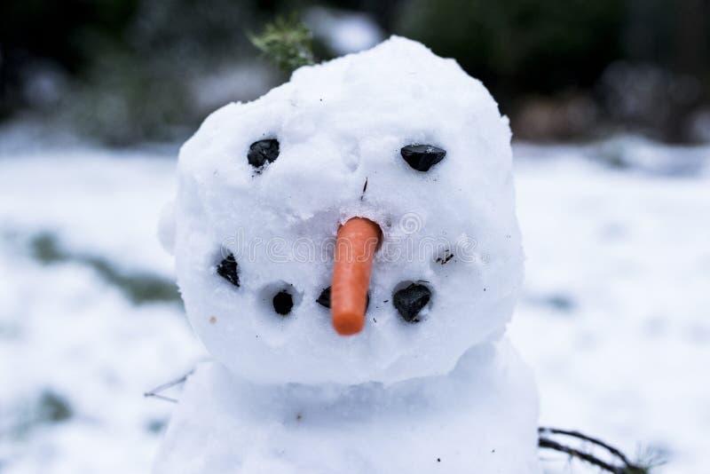 Verklig lycklig snögubbe som göras av ungar arkivfoton