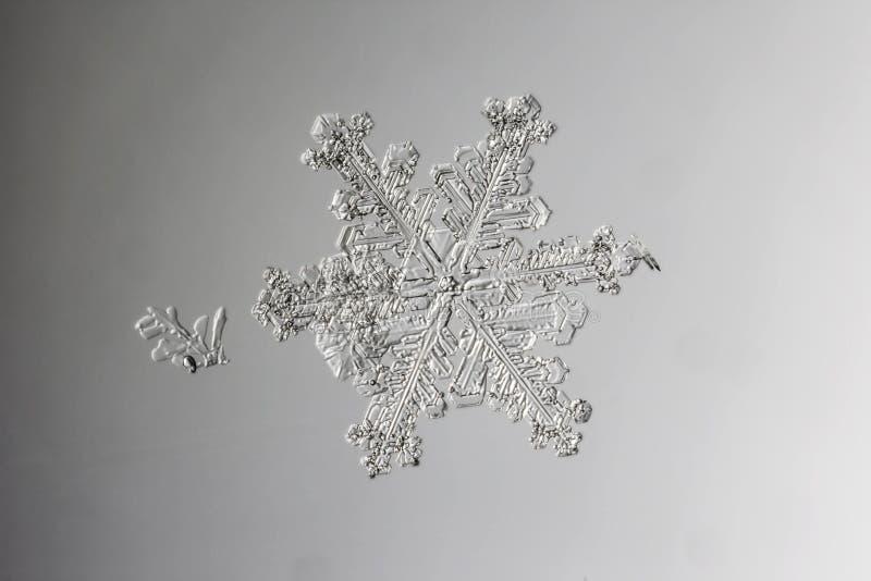 Verklig naturlig snöflinga på det våta glass makrofotoet arkivbild
