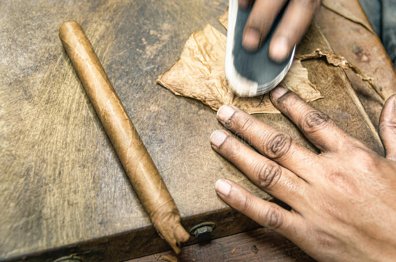 Verklig produktion av en handgjord cigarr royaltyfria foton