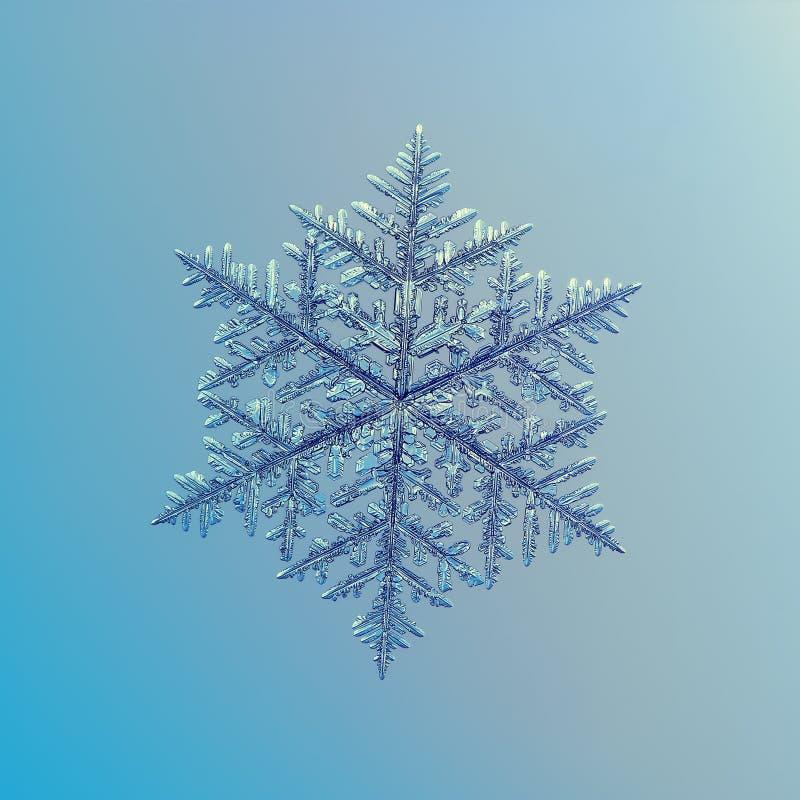 Verklig snöflinga som blänker på slät lutningbakgrund arkivfoto