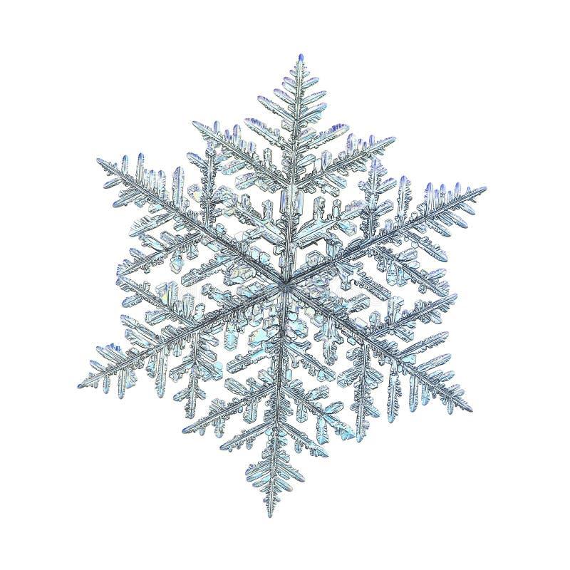 Verklig snöflinga som isoleras på vit bakgrund stock illustrationer
