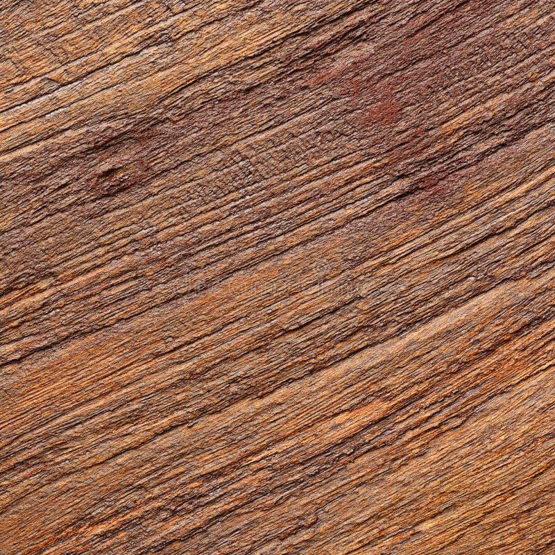 Verklig wood korntextur fotografering för bildbyråer