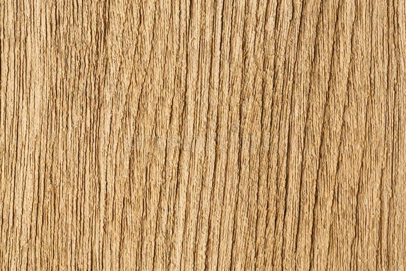 Verklig wood korntextur royaltyfri bild