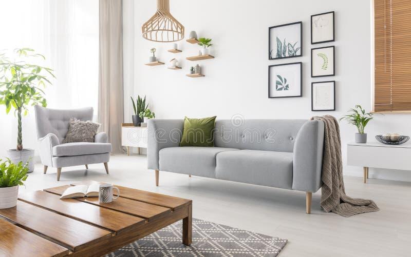 Verkligt foto av den gråa soffan med grönt kudde- och filtanseende i den vita vardagsruminre med enkla affischer, nya växter, a arkivfoto