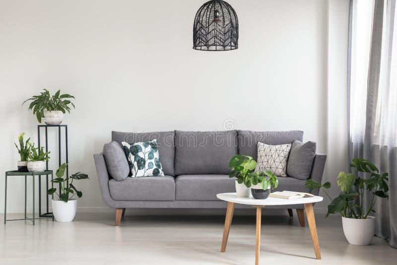 Verkligt foto av en enkel vardagsruminre med en grå soffa, växter och kaffetabellen royaltyfri foto