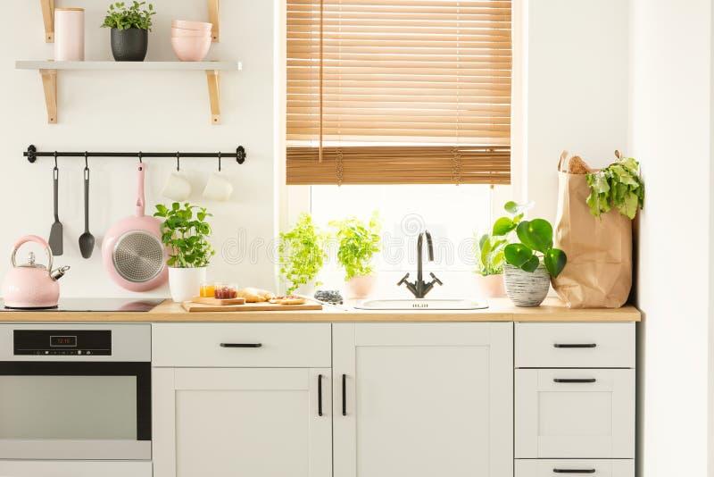 Verkligt foto av skåp för ett kök, countertop med växter, mat, och shoppingpåse och fönster med rullgardiner i en kökinre royaltyfri fotografi