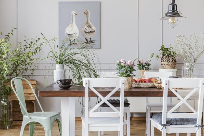Verkligt foto av växter i en rustical matsalinre med en tabell, stolar, målning med änder royaltyfri fotografi