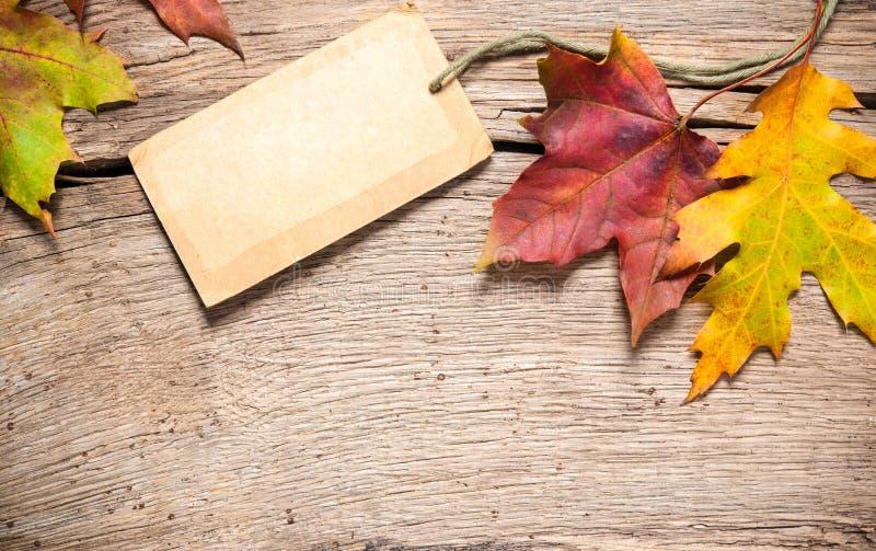 Verkoopmarkering met esdoornbladeren stock afbeeldingen