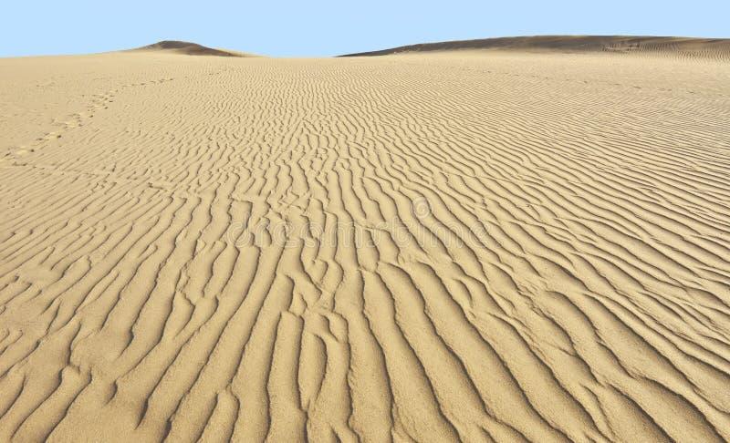 Verlaat zandduinen in Maspalomas, Gran Canaria royalty-vrije stock afbeeldingen