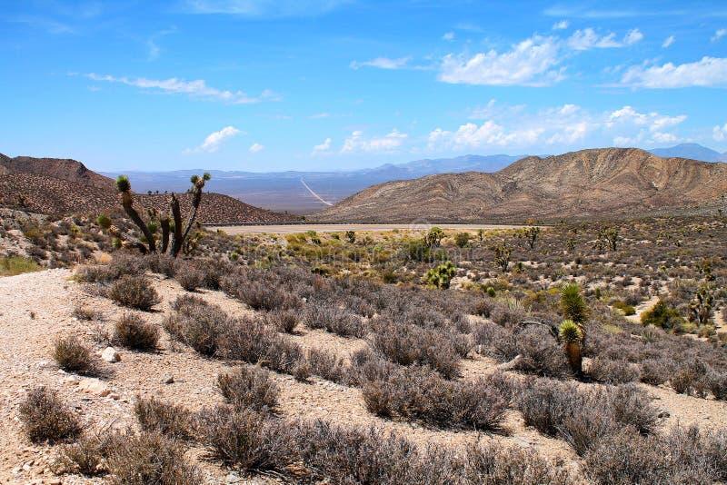 Verlassen Sie Landschaft mit Hügeln, Bergen, Joshua-Bäumen und einem entfernten Schotterweg stockfotos