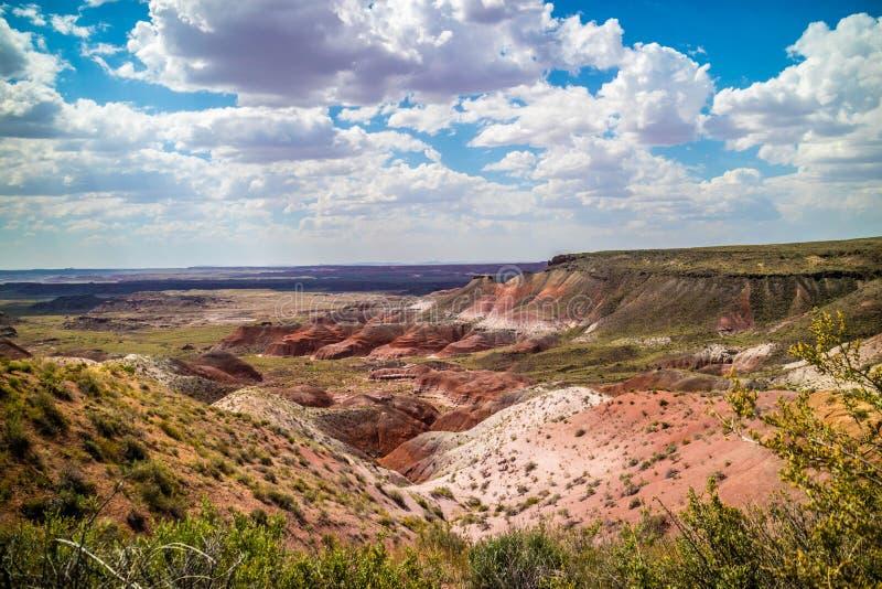Verlassen Sie Landschaft schönen versteinerten Forest National Parks, Arizona lizenzfreie stockfotos