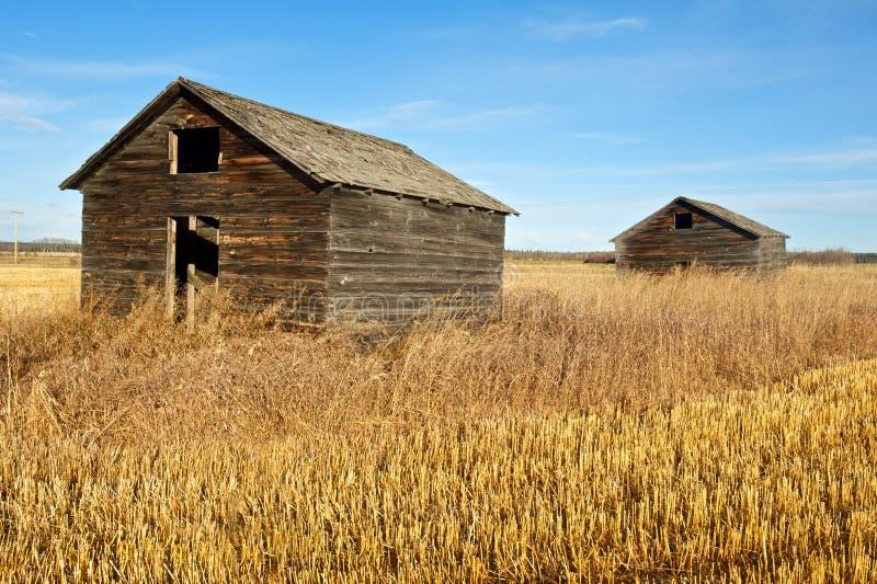 Verlassene alte Getreidespeicher im Fall stockfotografie