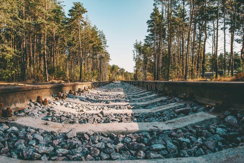 Verlassene Eisenbahn unter den Bäumen gemalt im Herbst Sonniger Tag Tunnel der Liebe Hintergrund lizenzfreie stockfotografie