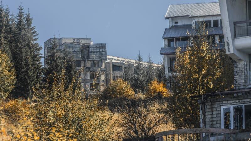 Verlassene Gebäude im Wald stockbild