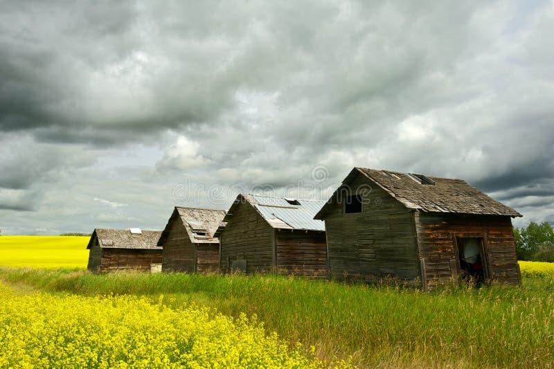 Verlassene Getreidespeicher und Regensturm stockbilder