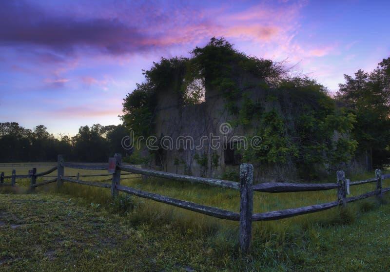 Verlassene Sch?nheit Kiefer Barrens, New-Jersey lizenzfreie stockfotografie