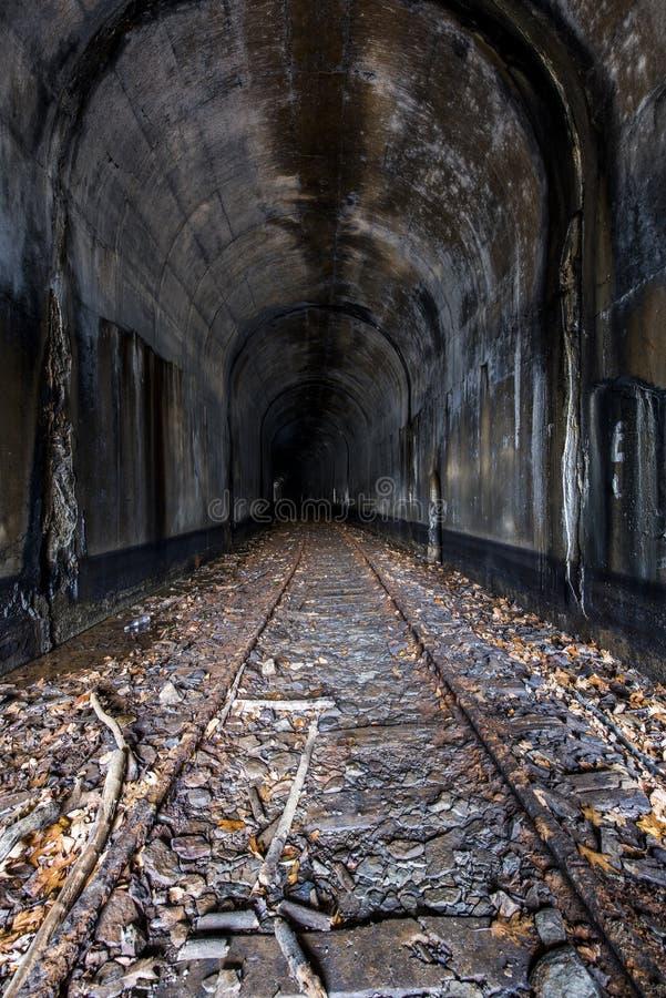 Verlassener Eisenbahn-Tunnel - Ohio stockbild