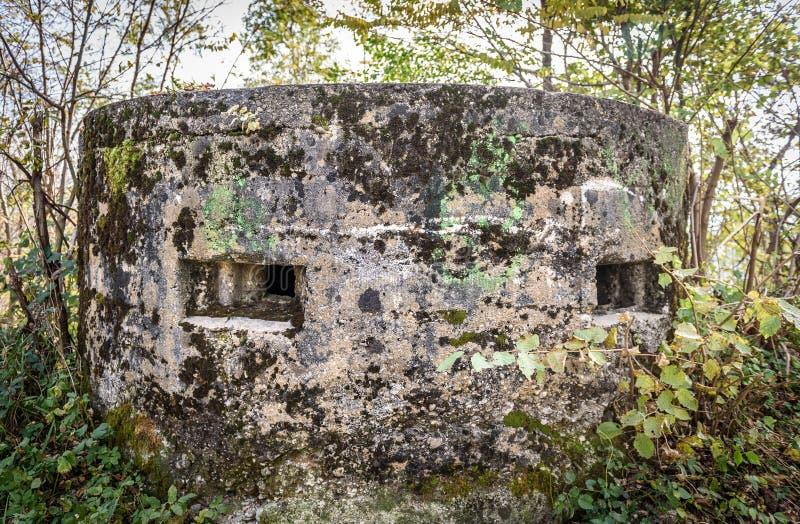 Verlassener Weltkrieg-Armeebunker bedeckt mit Moos im Wald lizenzfreie stockfotos