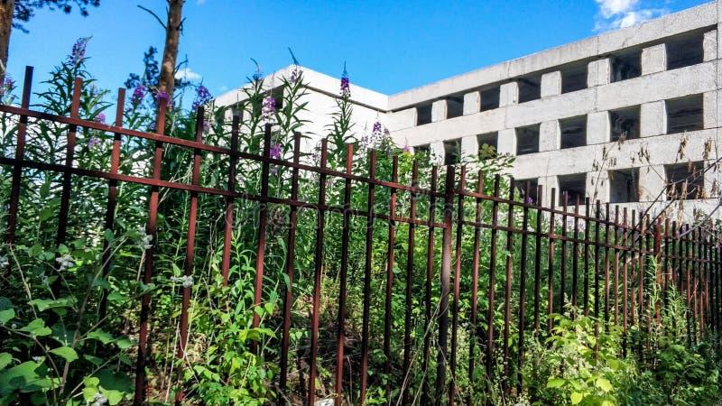 Verlassenes überwuchertes konkretes Haus an einem sonnigen Sommertag Gebäude ohne Glasfenster hinter dem rostigen Zaun stockbilder