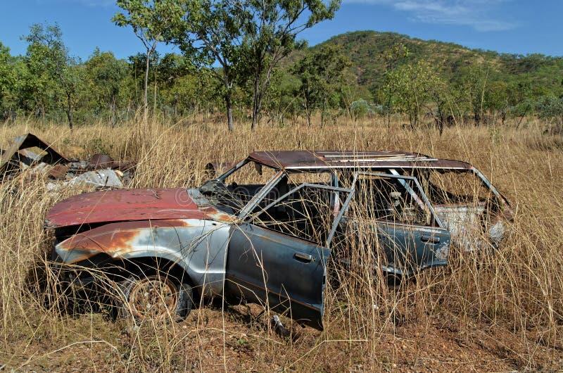 Verlassenes Auto herein unter dem Gras lizenzfreie stockfotos