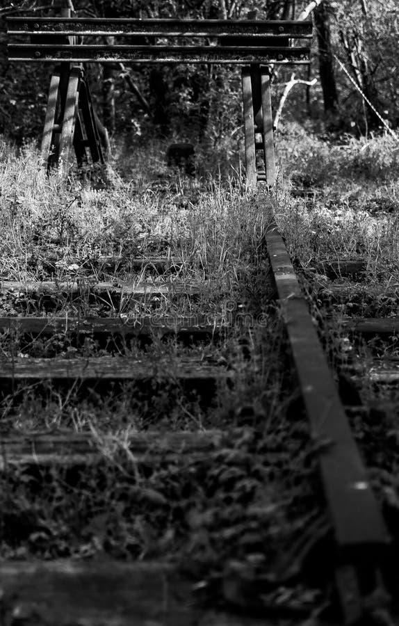 Verlassenes Bahngleis und Lagerschwelle in Mono lizenzfreies stockbild