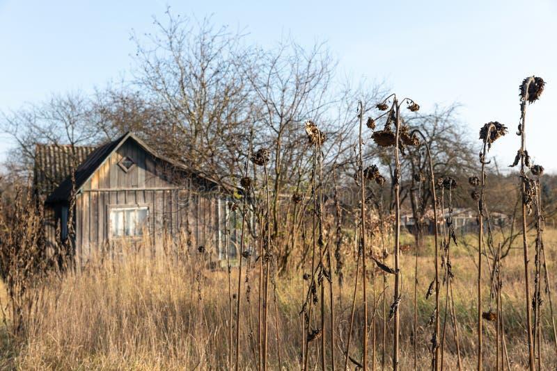 Verlassenes Häuschen des hölzernen Hauses in Ukraine Typischer Sowjet lizenzfreie stockbilder
