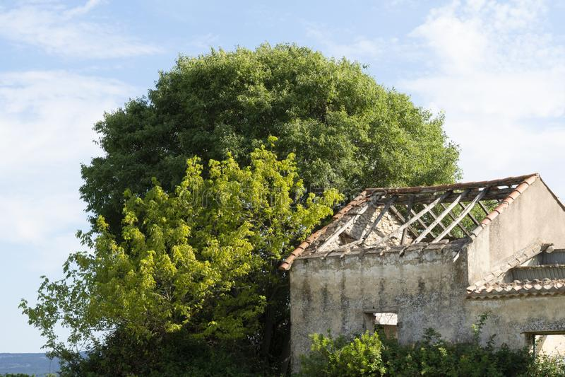 Verlassenes Haus mitten in dem Weinberg stockbilder
