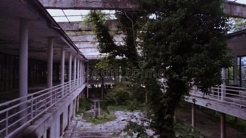 Verlassenes Restaurant nah zum Wald lizenzfreies stockbild