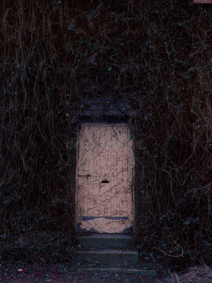 Verlassenes Tür narnia? stockfotografie