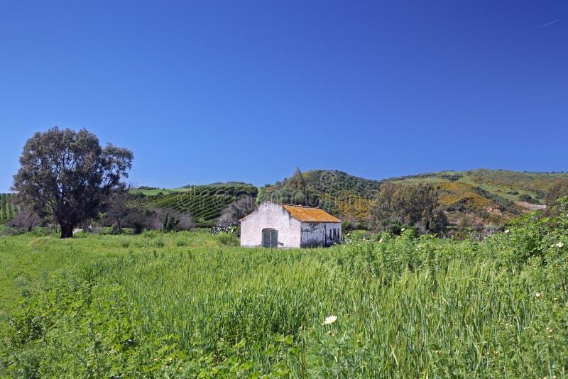 Verlaten boerderij op kleurrijk gebied in Spanje stock foto