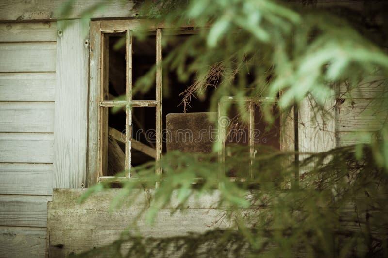 Verlaten cabine in het houtvenster stock foto
