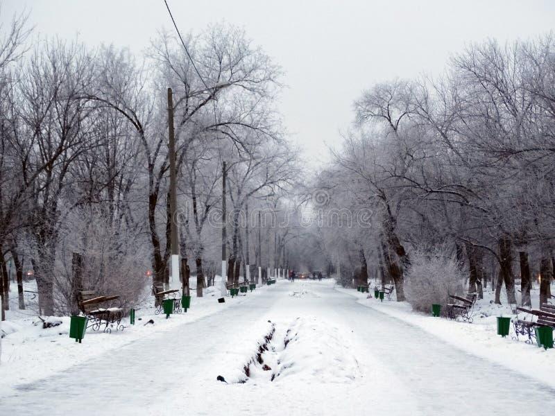 Verlaten de winterpark stock afbeelding