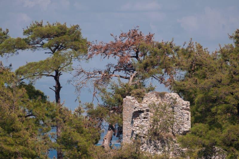Verlaten die kasteel door bos wordt omringd royalty-vrije stock foto's