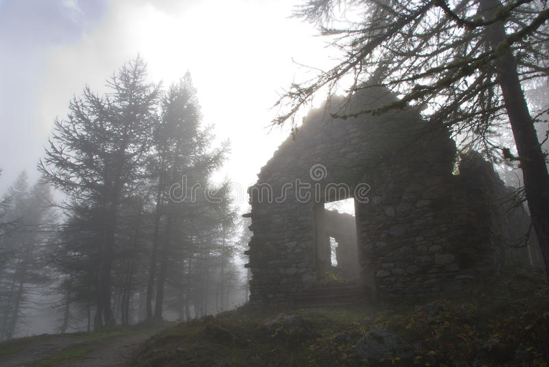 Verlaten huis in het hout in een mistige dag royalty-vrije stock foto