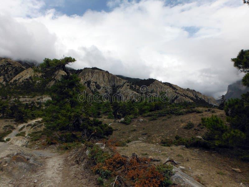 Verlaten Landschap van de Hogere Himalayan-Vlaktes stock fotografie