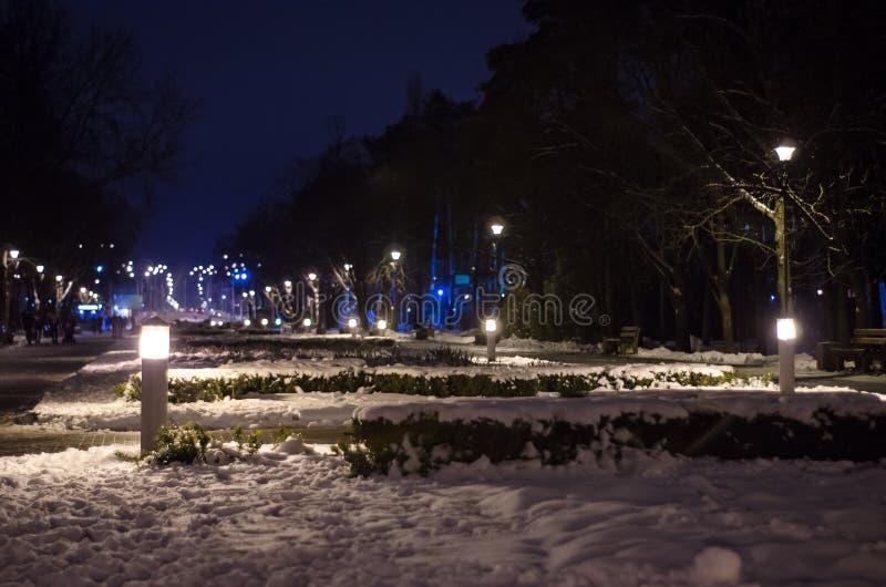 Verlaten park in de winter bij nacht Snow-Covered Landschap stock fotografie
