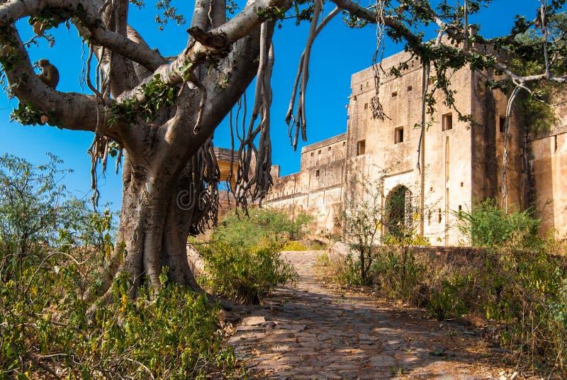 Verlaten Taragarh-Fort India royalty-vrije stock afbeelding
