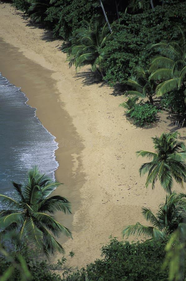 Verlaten tropisch strand, Tobago stock foto's